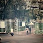 Кассы Павловского парка