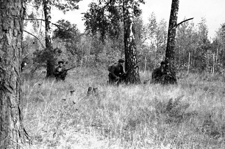 Партизаны одного из отрядов поджидают врага на лесной дороге